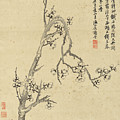 Ink Painting Plum Blossom by Yang Jin