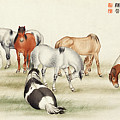 Ink Painting Stud Of Horses by Ma Jin