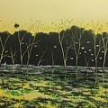 Inland Lakes by David O'Halloran