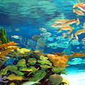 Inland Reef by Sam Davis Johnson