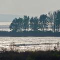 Inlet On Lake Michigan by Lynn Hansen