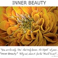 Inner Beauty Inspirational Art by Mary Lou Chmura