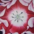 Inner Faz by Elsa Gallegos