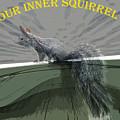 Inner Squirrel Art #2 by Ben Upham III