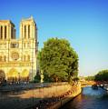 Notre Dame In Sunset Light by Anastasy Yarmolovich