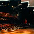 Inside Grand Ole Opry Nashville by Susanne Van Hulst
