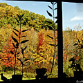Inside Looking Outside At Fall Splendor by Carol F Austin
