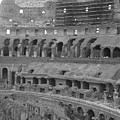 Inside The Colosseum by Shelby Eagleburger