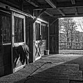 Inside The Horse Barn Black And White by Edward Fielding