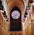 Inside The National Cathedral by D Hackett
