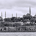 Instanbul In Black And White by Phyllis Taylor