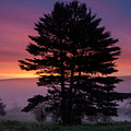 Intense Dawn Sky Over A Foggy South Amherst by Stephen Gingold