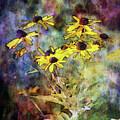 Intense Yellow 3227 Idp_2 by Steven Ward
