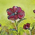 Intensity Of The Poppy II by Shadia Derbyshire
