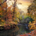 Intimate Autumn by Jessica Jenney