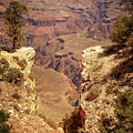 Into The Canyon by Susan Rissi Tregoning