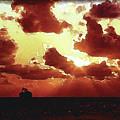 Into The Murky Sun by Richard Larson