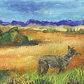 Into The Wild by Ashley Scibilia