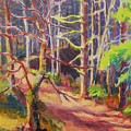 Into The Woods II by Margaret  Plumb