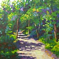 Into The Woods by Mary McInnis