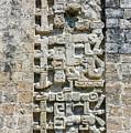 Intricate Details Of Mayan Ruins by Jess Kraft