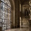 Intricate Ironwork - Lacy Wrought Iron Gates by Georgia Mizuleva