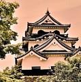 Inuyama Castle by Juergen Weiss