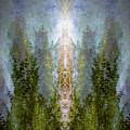 Radiance Rising by Sandra Nesbit