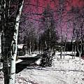 Invernal Landscape by Galeria Trompiz