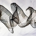 Inverted Reflection Abstract 403 by Craig Royal