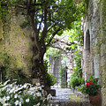 Inviting Courtyard by Carla Parris
