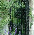 Inviting Garden Door by Bruce Gourley