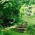 Inviting Steps In Ireland by Kenlynn Schroeder