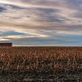Iowa Corn Fields In The Fall by Edward Peterson