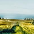 Iowa Cornfield Panorama by Mountain Dreams