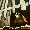Iquitos Monkey by Chris  Slaymaker