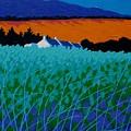 Ireland - West Cork  by John  Nolan