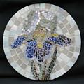 Iris by Deborah Hildinger
