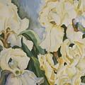 Iris  by Donna Steward