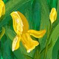 Iris Flow by Wanda Pepin