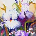 Iris by George Markiewicz
