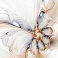 Iris by Amanda Moore