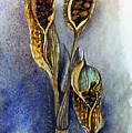 Iris Pods Small by Kathy Sturr