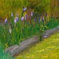 Iris Procession by Wanda Pepin