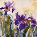 Irises by Donna Tuten