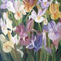 Irises by Gina De Gorna