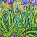 Irises In A Sunny Garden by Carolyn Donnell