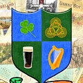 Irish Coat Of Arms - Carroll by Mark E Tisdale