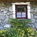 Irish Cottage Window County Clare Ireland by Teresa Mucha
