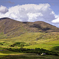 Irish Countryside by Bob Cuthbert